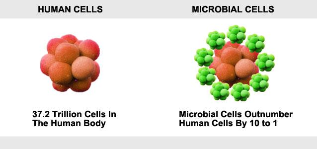 personals cells
